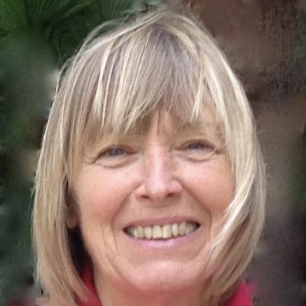 Susan Cohen Raphael